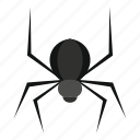 animal, danger, fear, insect, scary, spider, widow icon
