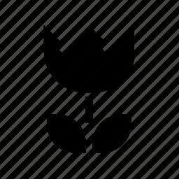 camera, macro icon