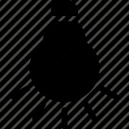 camera, flash, incandescent, picture, wb icon