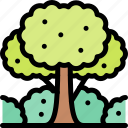 forest, jungle, nature, tree, wild icon