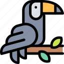 forest, jungle, nature, toucan, wild icon