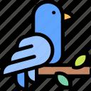 bird, forest, jungle, nature, wild icon