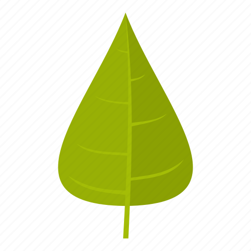 element, leaf, natural, nature, organic, plant, poplar icon
