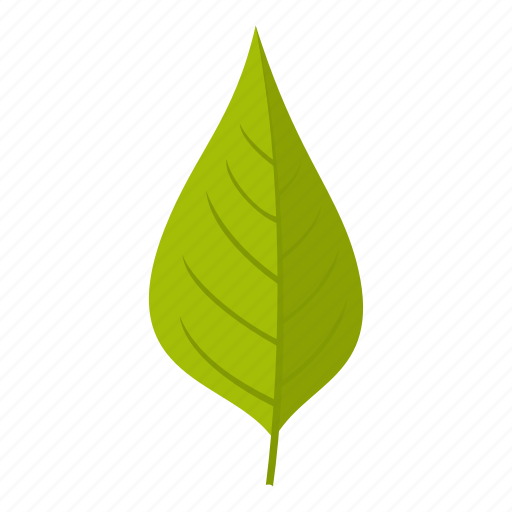 apple, element, leaf, natural, nature, organic, plant icon