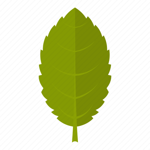 element, leaf, natural, nature, organic, plant, plum icon