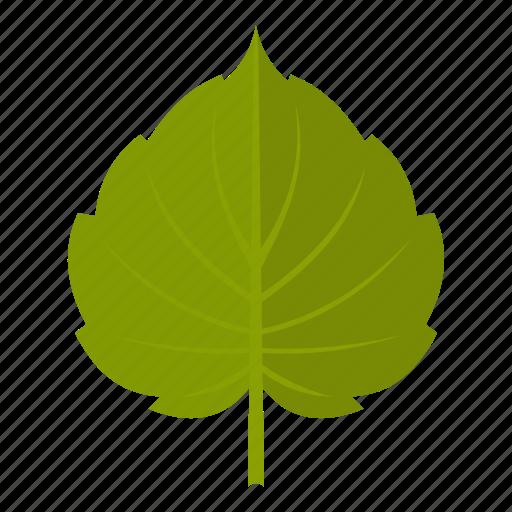 alder, element, leaf, natural, nature, organic, plant icon