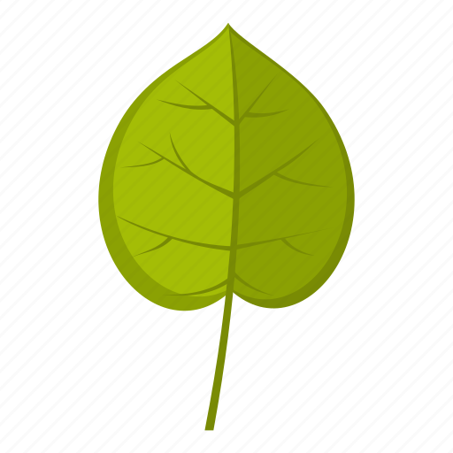 element, leaf, linden, natural, nature, organic, plant icon