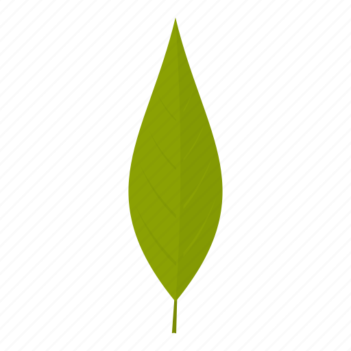 element, leaf, natural, nature, organic, plant, willow icon