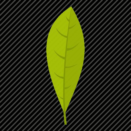 element, flora, leaf, natural, nature, organic, plant icon