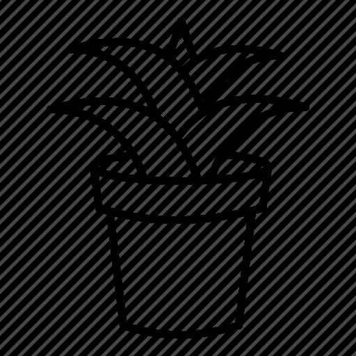 ecology, flower, garden, interior, park, plant, real estae icon