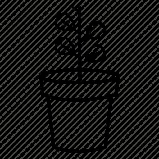 eco, flower, garden, interior, landscape, park, plant icon