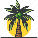 palm, plants, tree, trees, tropical icon