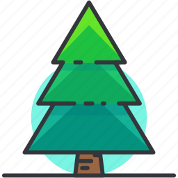 forest, nature, pine, plants, tree icon