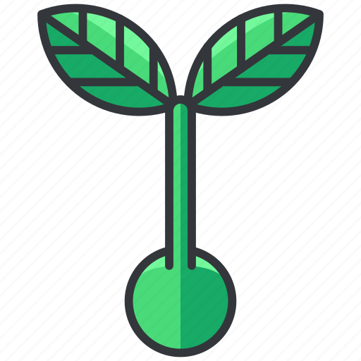 ecology, grow, nature, plant, sprout icon