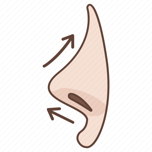 cosmetic, enhancement, nasal, nose, reconstruction, shaping, surgery icon