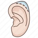 corrective, cosmetic, ear, plastic, procedure, reduction, surgery icon
