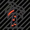 culture, global, india, indian, palm, srilanka, tree