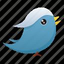 bird, social media, twitter, animal, communication, media, social