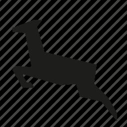 animal, deer, jump, later, reindeer, wild icon