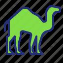 animal, camel, desert, transport, travel icon