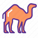 animal, camel, desert, transport, travel icon