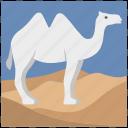 animal, camel, desert, journey, mammal, tourism, travel icon