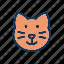 cat, kitty, neko, random