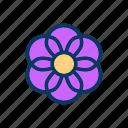 flower, natural, nature, organic, random, vegan