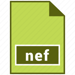 nef, raster file format icon