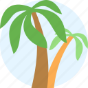 travel, palm, tree