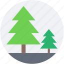 conifer trees, fir trees, forest, park, pine trees icon