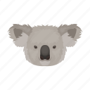 animal, bear, eucalyptus, koala, mammal, wild, zoo