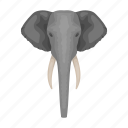 animal, elephant, mammal, trunk, tusk, wild, zoo icon