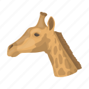 animal, giraffe, long-necked, mammal, ungulate, wild, zoo