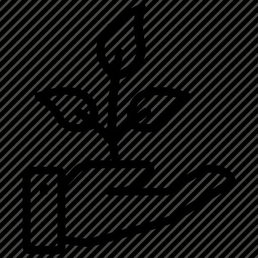 growing plant, planting, sapling, sapling logo, seedling icon