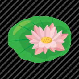 beauty, cartoon, floral, flower, lotus, petal, plant icon