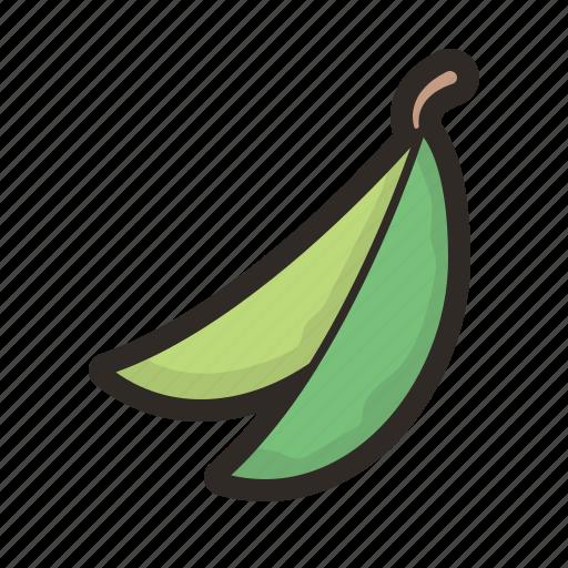 beans, green, greens, legume, vegetable icon
