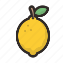 food, fruit, healthy, lemon icon