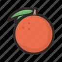 orange, food, fruit, organic