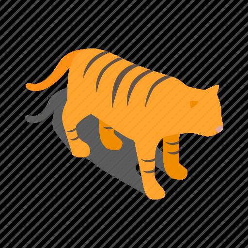 chinese, economics, isometric, korean, new, tiger, year icon