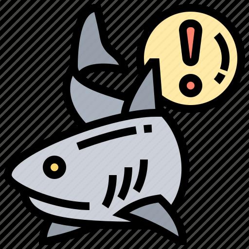 beware, danger, marine, ocean, sharks icon