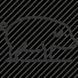 animal, farming, mammal, meat, pig, sq617 icon