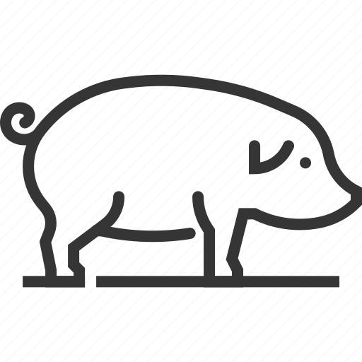 Animal, farming, mammal, meat, pig, sq617 icon - Download on Iconfinder