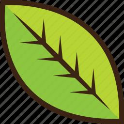 foliage, forest, greenery, leaf, spring icon