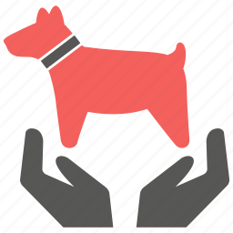animal, care, dog, love, pet, protection, secure icon