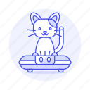 cat, cleaner, cleaning, robot, robotic, vacuum