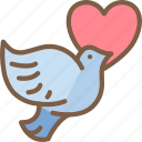 day, dove, love, romance, valentines icon