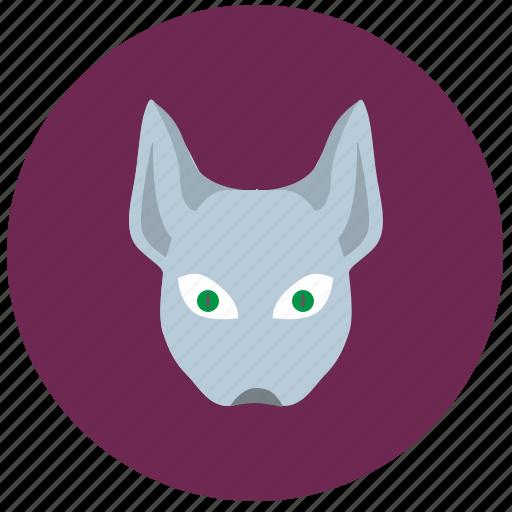 avatar, cat, face, hero, kitty icon
