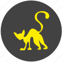 avatar, cat, kitty, night, round icon