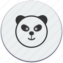 angry, animal, bear, panda, zoo icon